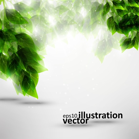 Beautiful green leaves, eco vector background  Çizim