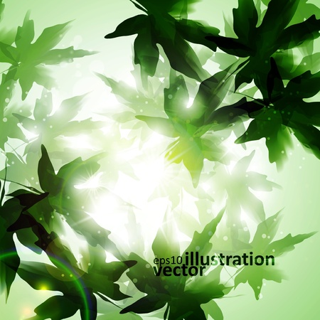 Leaves background, nature season poster. Stock Vector - 12896341
