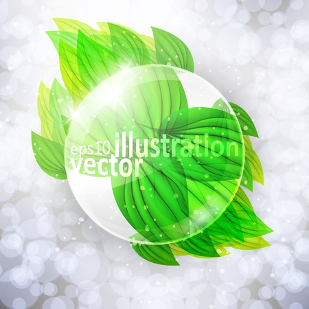 Magnifying glass on beautiful green leaves, eco vector background Stock Vector - 12896501