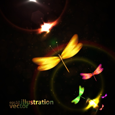 Shiny abstract dragonfly futuristic colorful illustration  Vector