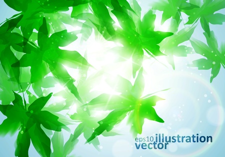 sycamore: Environment leaf background Illustration