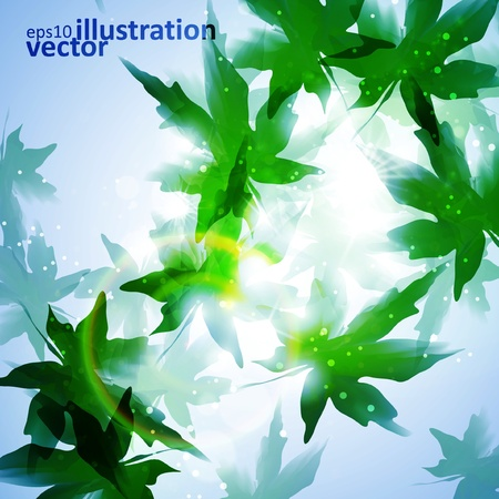 Environment leaf background Vector