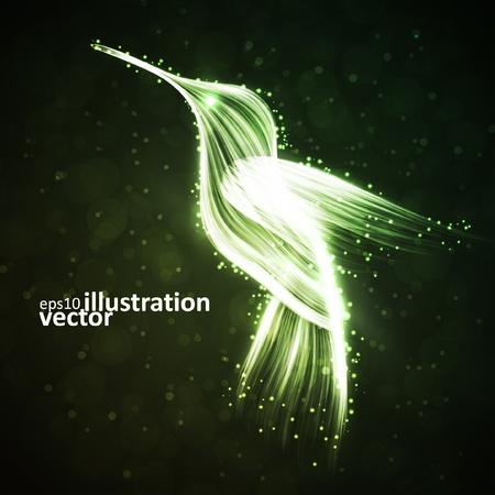 Neon hummingbird, abstract lights vector backgrounds