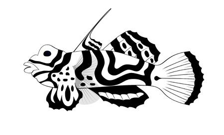 fish tribal tattoo, black pattern silhouette sketch tatoo photo