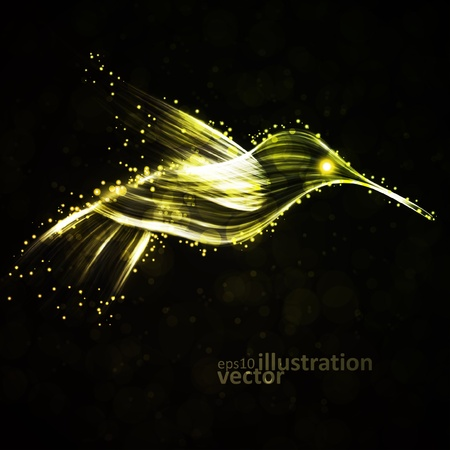 Neon hummingbird, abstract lights vector backgrounds eps10 Vector