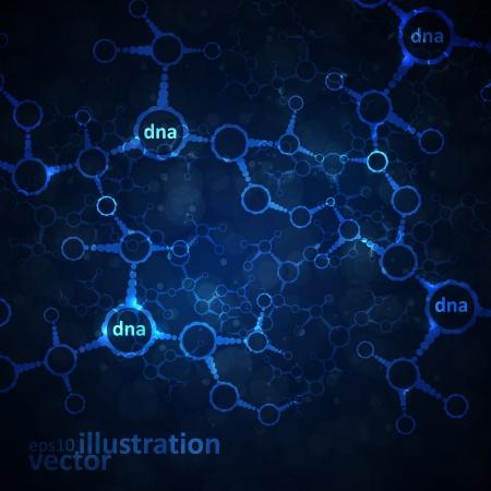 biologia molecular: ADN futurista, la mol�cula de resumen, ilustraci�n de c�lulas Vectores