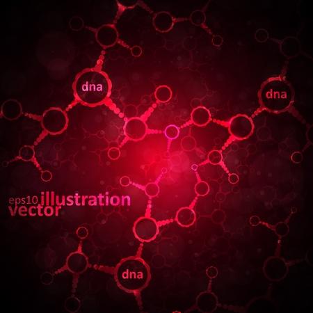 Futuristic dna, abstract molecule, cell illustration Stock Vector - 13531925