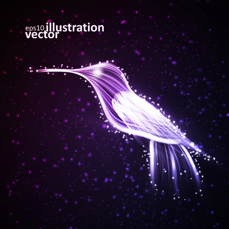 Neon hummingbird, abstract lights backgrounds Vector