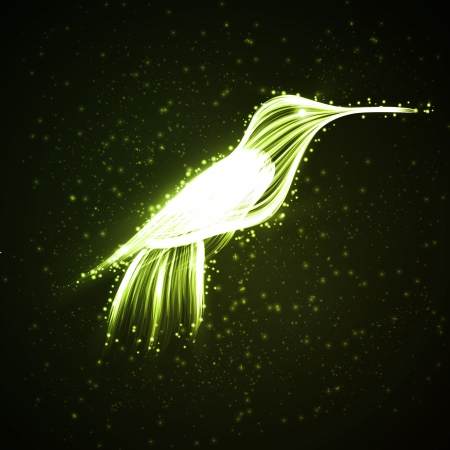Neon hummingbird, abstract lights backgrounds photo