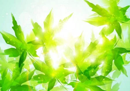 Сolorful watercolor leaves. Environment leaf background, season poster photo