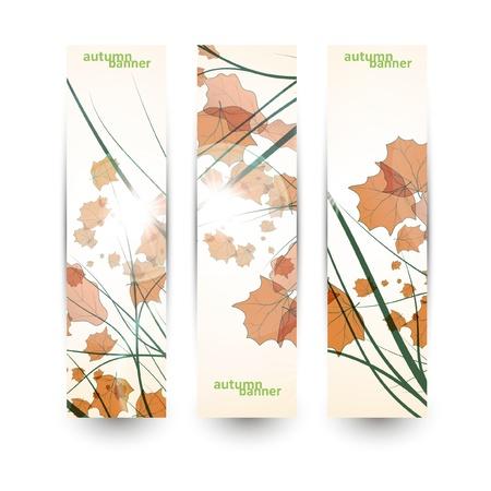 Autumn banner set, vector illustration eps10 Stock Vector - 15192253