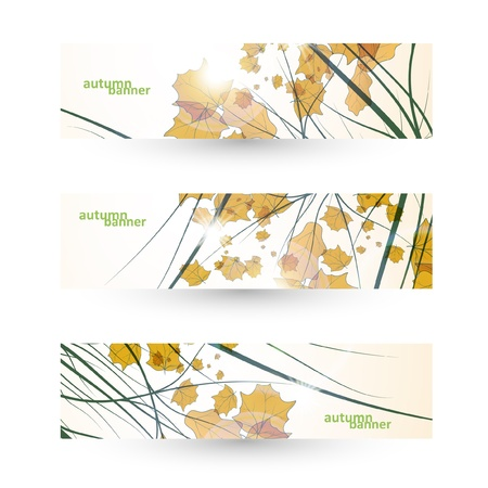 Autumn banner set, vector illustration eps10 Stock Vector - 15192254
