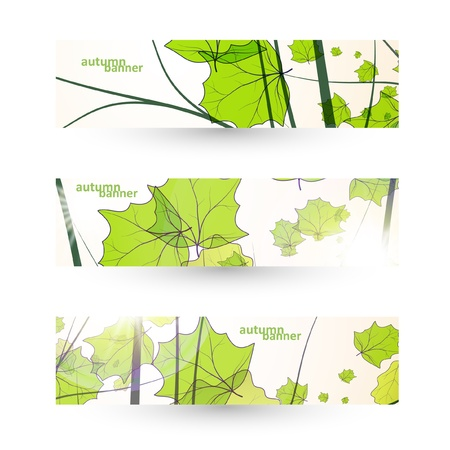 Autumn banner set, vector illustration eps10 Stock Vector - 14975387