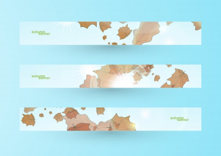 Autumn banner set Vector