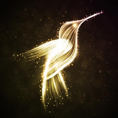 humming: Neon colibr�, fondos luces abstractas Foto de archivo
