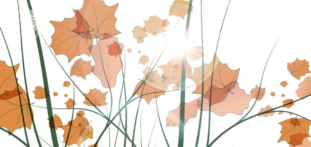 Leaves background, colorful environment leaf, eco illustration illustration