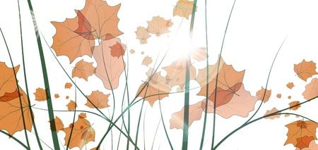 leafage: Leaves background, colorful environment leaf, eco illustration