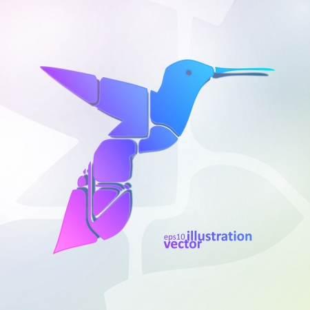 Colorful hummingbird, abstract symbol vector illustration  Vector