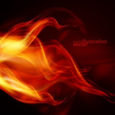 heat: Abstract fire flames on a black background  Colorful vector illustration