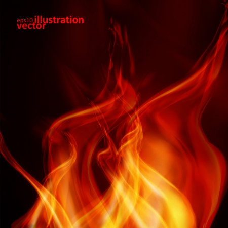 hell fire: Abstract fire flames on a black background. Colorful vector illustration