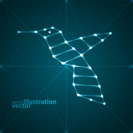 Abstract hummingbird illustration, stylish lights, futuristic vector  Vector