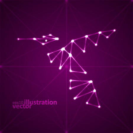 Abstract hummingbird illustration, stylish lights Vector