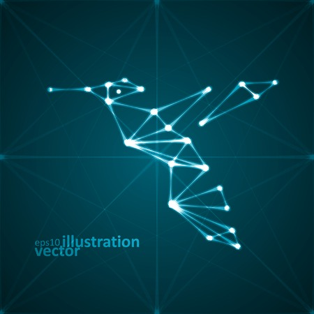 Abstract hummingbird illustration, stylish lights, futuristic vector  Vector