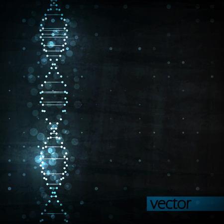 biologia: ADN futurista, la mol�cula de resumen, ilustraci�n de c�lulas eps10