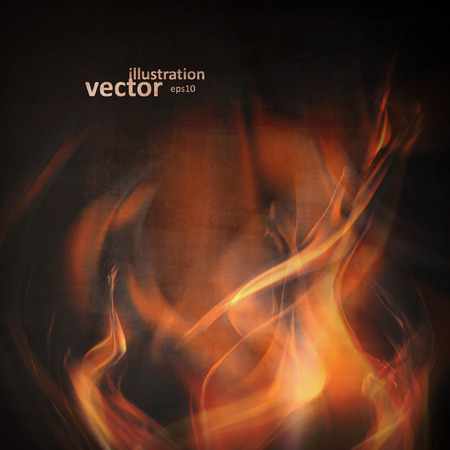 Abstract fire flames on a black background. Colorful vector illustration