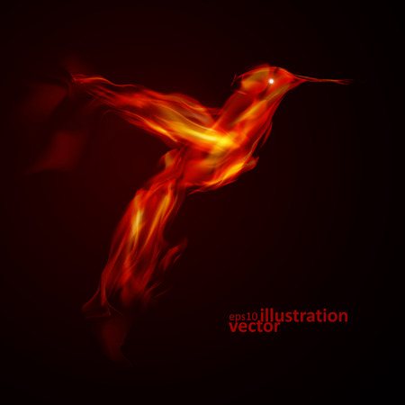 flame wings: Burning fiery bird, abstract vector  illustration eps10