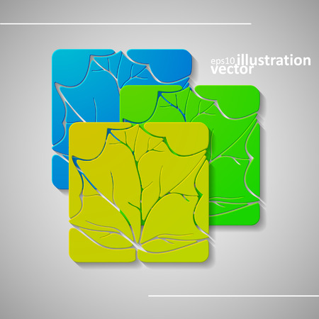 cosmetician: Set of abstract leafs, vector illustration, graphic concept  for your design. Illustration