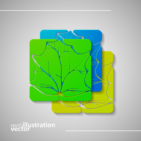cosmetician: Set of abstract leafs, vector illustration eps10, graphic concept  for your design.