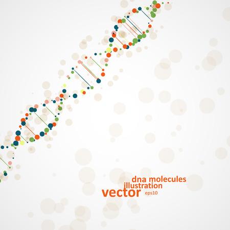 adn humano: ADN abstracta, molécula futurista, ilustración celular