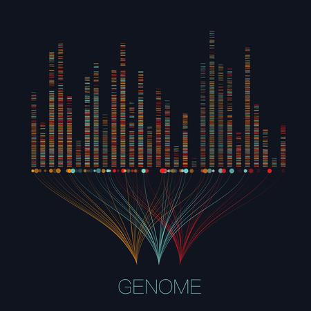 Große genomische Datenvisualisierung. DNA-Test, Genomkarte. Grafisches Konzept für Ihr Design