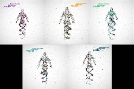 Futuristic model of man dna, abstract molecule, cell illustration Illustration