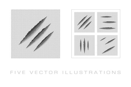 Claws scratches on paper with ripped edges with shadow on transparent background. Graphic concept for your design