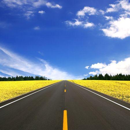 straight line: Asphalt Road