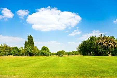 Golf fields landscape