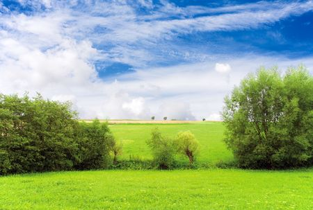 Eco - beautiful green landscape Stock Photo - 7750909