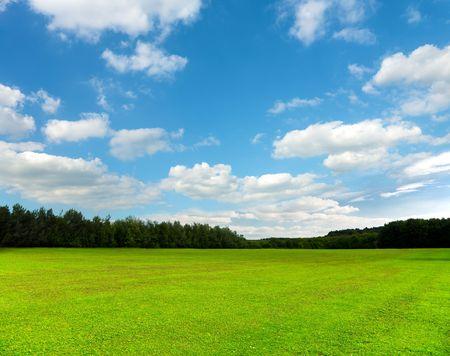 美しい緑のフィールドと空 写真素材