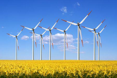 Windmills photo