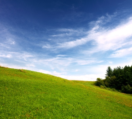 Field and sky Stock Photo - 8255590