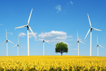 Power generating windmills photo