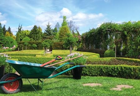 봄에 푸른 정원 스톡 콘텐츠