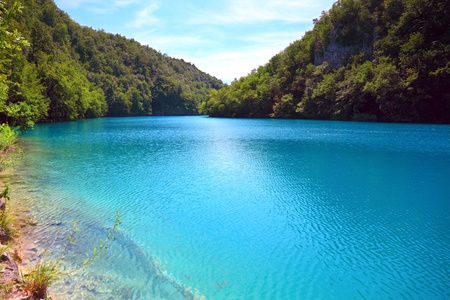 national plant: Breathtaking view in the Plitvice Lakes National Park (Croatia)