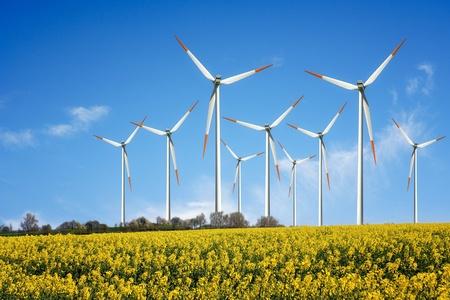 wind energy: Wind Power