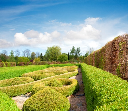 formal garden: Tranquil Formal Garden in spring