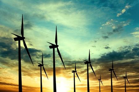 viento: granja de aerogeneradores al atardecer Foto de archivo