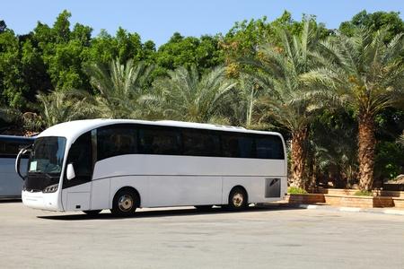 chofer de autobus: Recorrido en Autob�s y vacaciones de verano