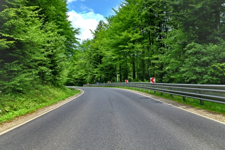 Winding curve road in a green forest photo